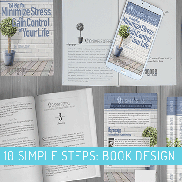 10 Simple Steps To Help You Minimize Stress and Gain Control of Your Life: Book